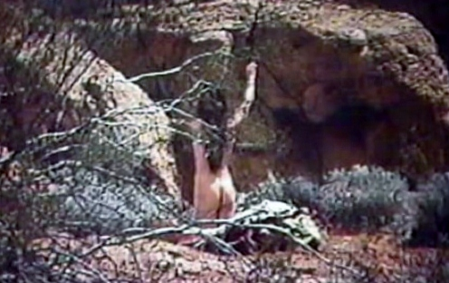 Stefanie Powers nude