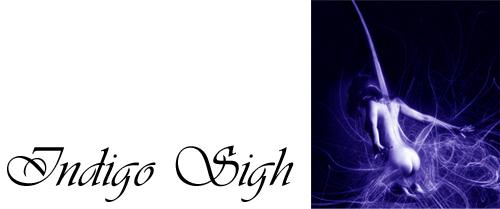 Indigo Signature Banner