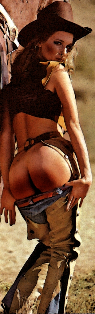 cowgirl trouble