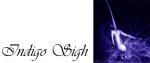 indigo-signature-banner